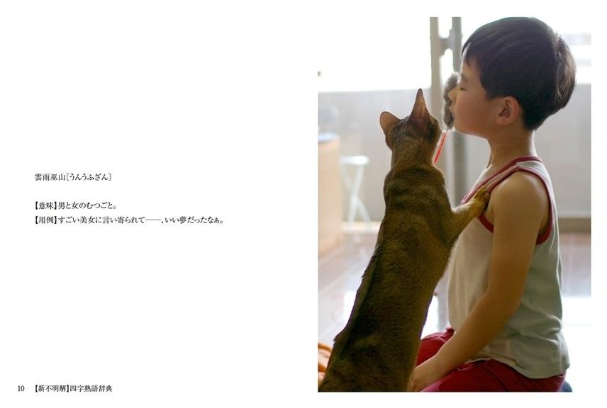 kikumimicの作品 「【新不明解】四字熟語辞典」 | フォトブック ...