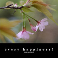 every happiness!