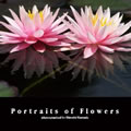 Portraits of Flowers