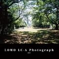 LOMO LC-A Photograph