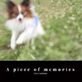A piece of memories