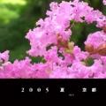 2005 夏  京都