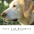 Love Lab Brothers