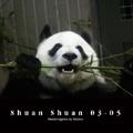 Shuan Shuan 03-05