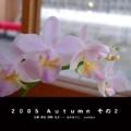 2005 Autumn その2