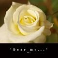 *Dear my...*