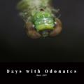 Days with Odonates