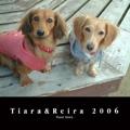 Tiara&Reira 2006