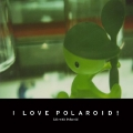 I LOVE POLAROID!