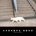 日本路地裏学会 猫路地部