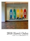 2018 Hawii Oahu