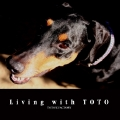 Living with TOTO