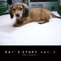 KAI'S STORY  vol.1