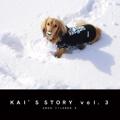 KAI'S STORY  vol.3
