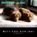 Mel's Cafe with Juni