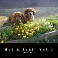 Mel & Juni  Vol.1