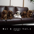 Mel & Juni Vol.2