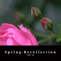 Spring-Recollection