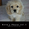 Kota's Photo vol.1