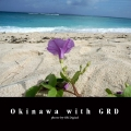 Okinawa with GRD