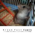 Break Fast Family