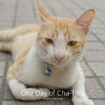 One Day of Cha-Tora