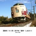 国鉄色183系(あやめ・臨時・しおさい)