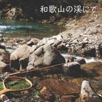 和歌山の渓にて