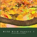 Wild Bird Square 5