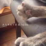 み ら ち ゅ う 日 記 16/04