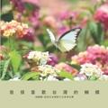 我很喜歡台灣的蝴蝶