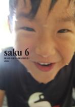 saku 6