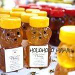 holoholo HAWAII