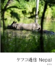 ケフコ通信 Nepal