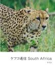 ケフコ通信 South Africa