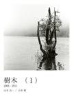 樹木 (1)
