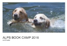 ALPS BOOK CAMP 2016