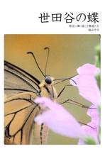 世田谷の蝶
