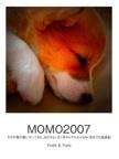 MOMO2007