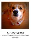 MOMO2008