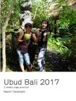 Ubud Bali 2017
