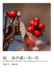 秋 木の実いろいろ