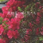 武相荘に咲く花たち