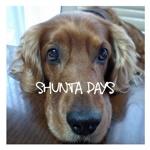 SHUNTA DAYS