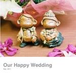 Our Happy Wedding