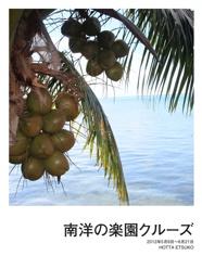 南洋の楽園クルーズ