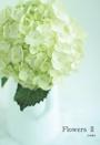 Flowers Ⅱ