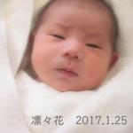 凛々花 2017.1.25