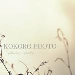 KOKORO PHOTO