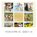 さくらちゃんの思い出 2020.1〜6